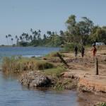 Marracuene - Rives du fleuve Nkomati