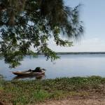 Macaneta - Rives du fleuve Nkomati