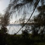 Macaneta - Fleuve Nkomati et végétation