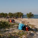 La République des enfants - Mangrove